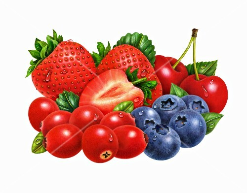 Mixed berries: strawberries, cranberries, blueberries, cherries (illustration)