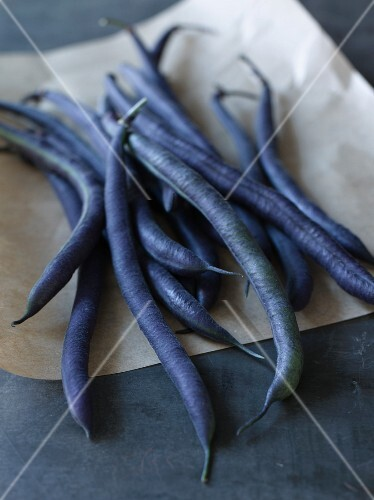 Purple Bush Beans