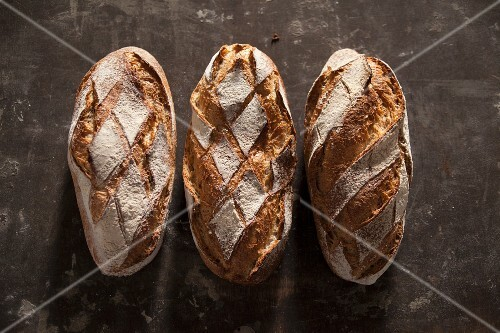 Three loaves of country bread