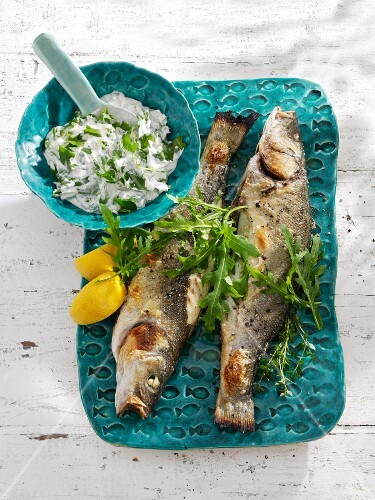 Fried bass with rocket quark