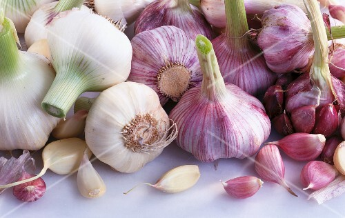 Various bulbs and cloves of garlic