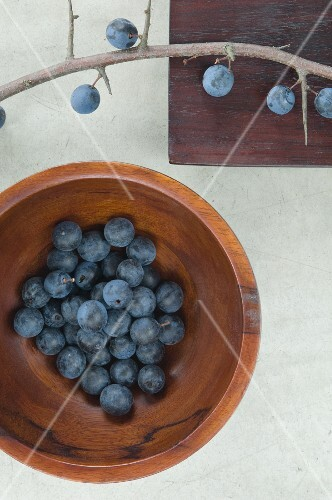 Sloes in a wooden bowl, viewed from above