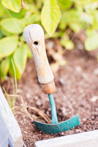 Small garden trowel in the soil of a herb bed