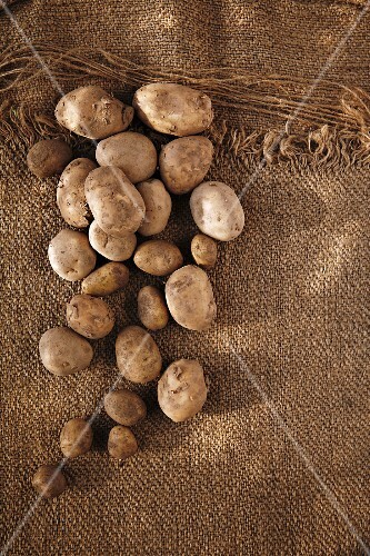 Lots of potatoes on a jute sack