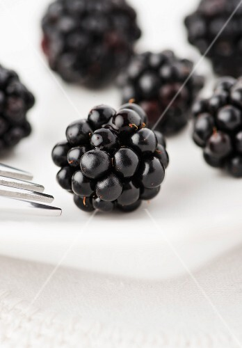 Blackberries on a white plate