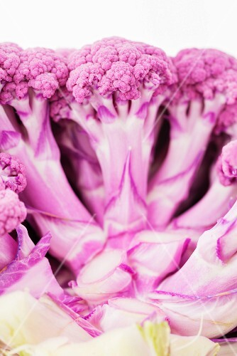 Pink cauliflower