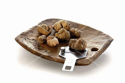 White truffles on a rustic wooden plate with a truffle slicer
