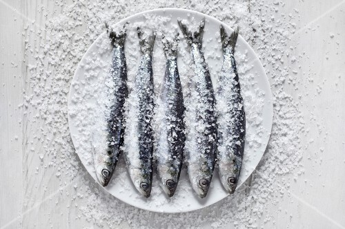 Raw sardines, covered with salt