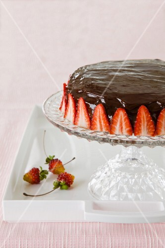 Chocolate torte with strawberries on a torte stand
