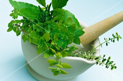 Freshly picked culinary herbs in a pestle and mortar