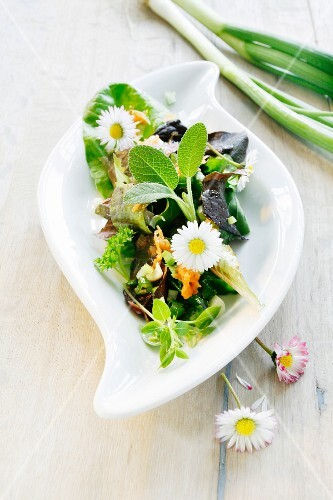 Lettuce salad with daisies