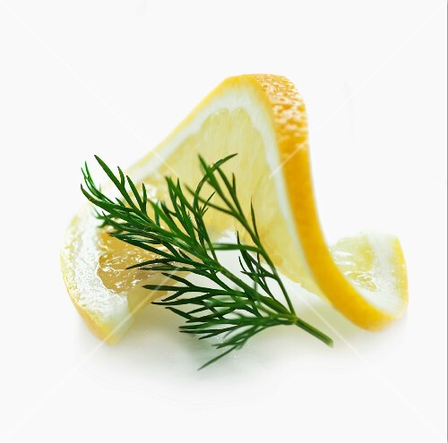 A slice of lemon and a sprig of dill with no background