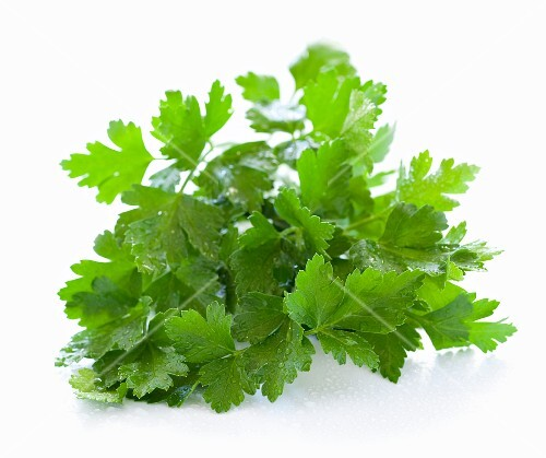 A bunch of parsley (no background)