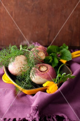 Fresh Whole Turnips with Fennel in a Yellow Skillet