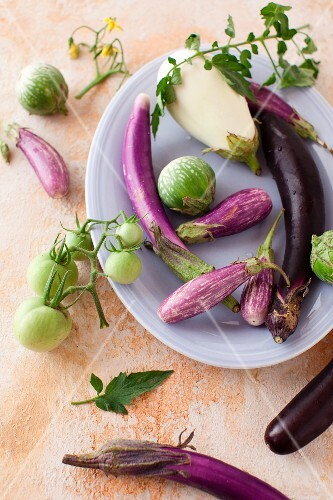 A Variety of Eggplants and Green Tomatoes
