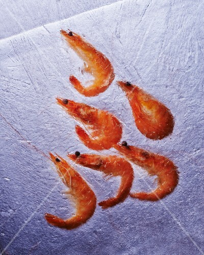 Prawns in ice