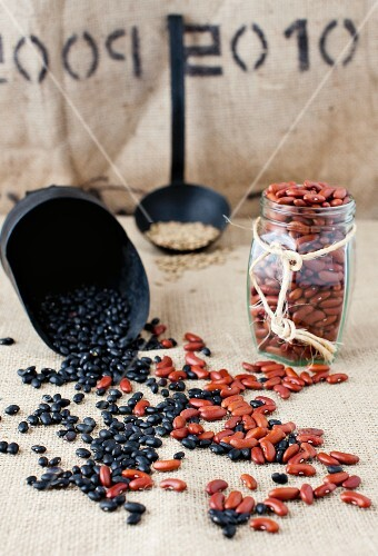 Black Beans and Kidney Beans