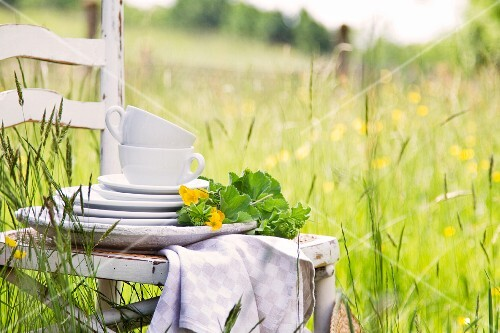 Stacked plates and cups with flowers on a wooden chair in a field in springtime