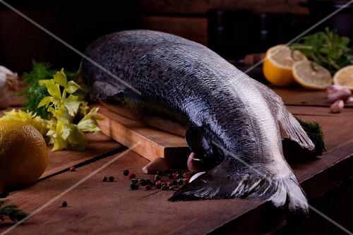 A whole fresh salmon on a wooden board