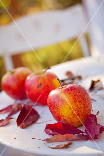 Three apples and red fall leaves