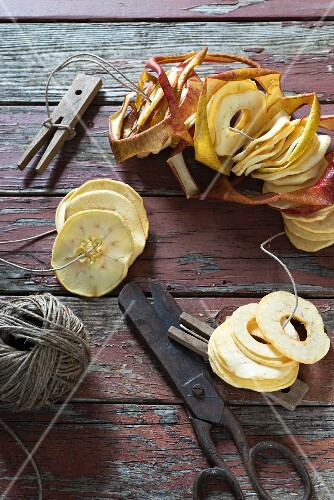 Apple rings being prepared for drying