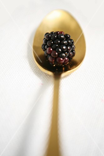A blackberry on a golden spoon
