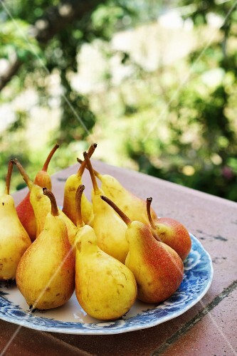 Yellow and red pears on a plate
