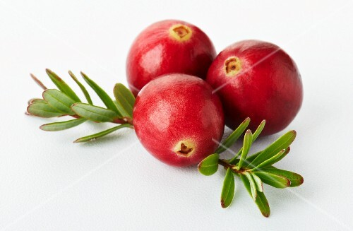 Three cranberries with a twig