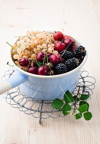 Whitecurrants, gooseberries, blackberries and cherries in an enamel pot
