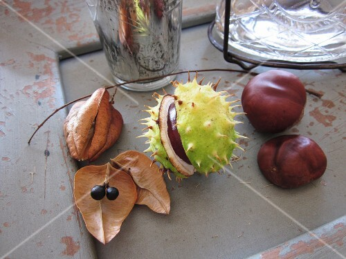 Sweet chestnuts and dried fruit as an autumnal decoration
