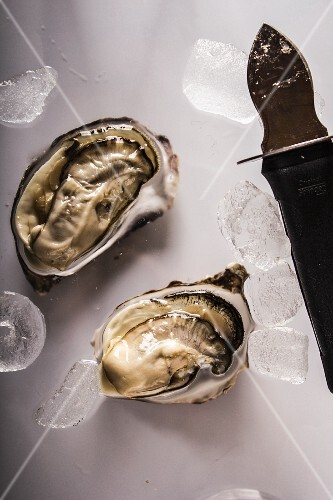 Gillardo oyster with knife