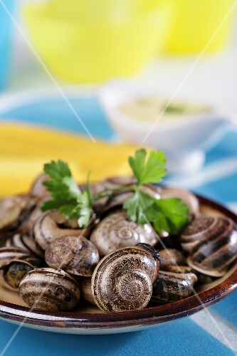 Brutesca-style snails