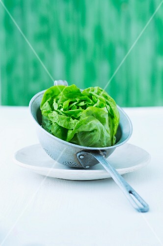 A round lettuce in a colander