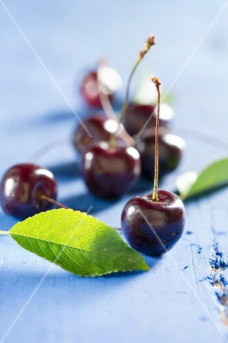 Sweet cherries on a blue tabletop