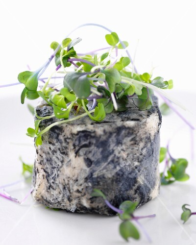 Goat's cheese with fresh edible shoots