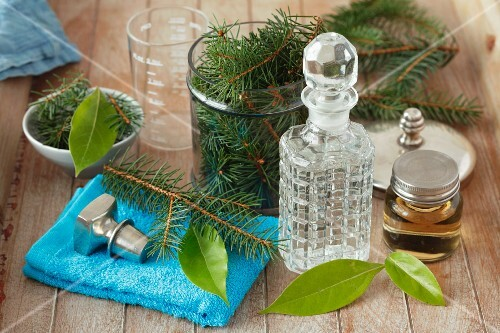 Ingredients for home-made rubbing alcohol (camphor and fir twigs)