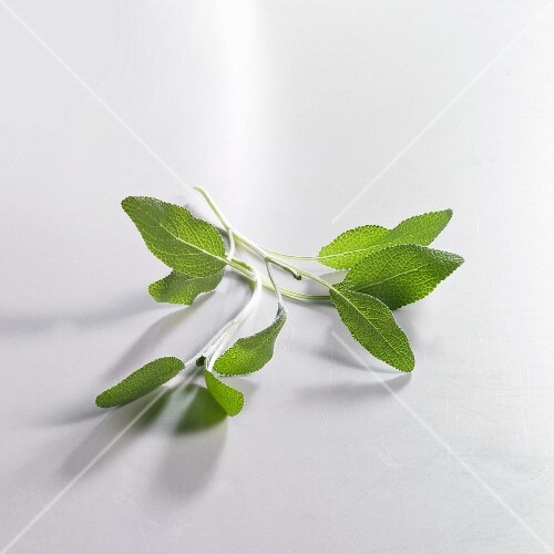 A sprig of fresh sage