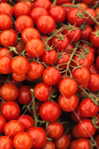 Many Fresh Grape Tomatoes