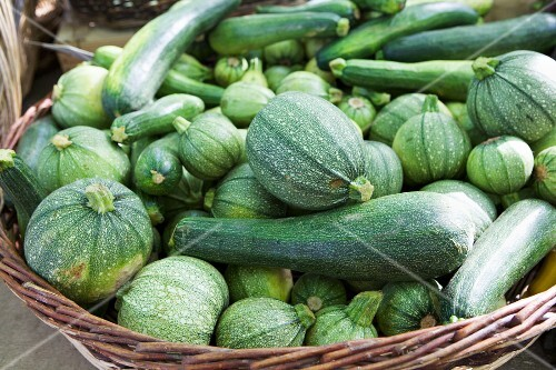 Courgettes and marrows in a basket