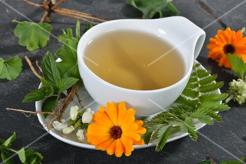 A cup of herbal tea with marigolds, dead-nettle, lemon balm, silverweed, peppermint and valerian root