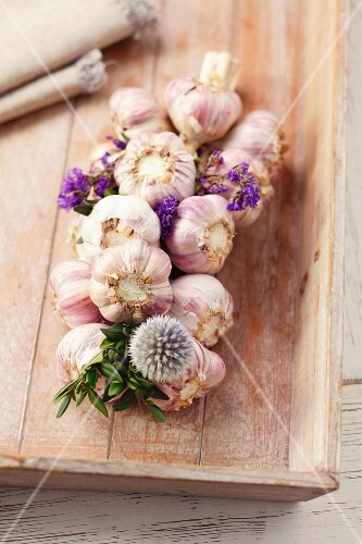 Plaited garlic with flowers on a chopping board