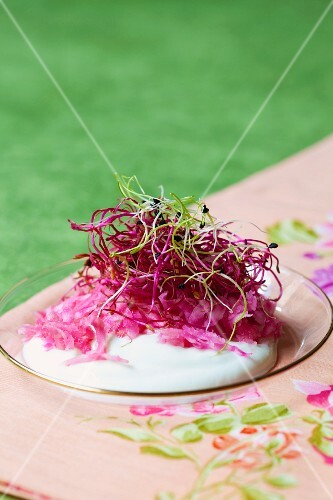 Quark with grated beetroot and bean sprouts