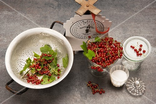 Redcurrants with a pair of kitchen scales, sugar and a preserving jar