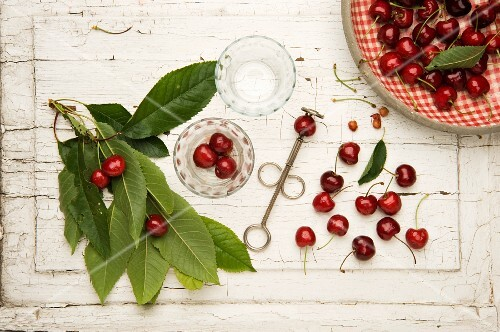 Fresh red cherries with a cherry pitter