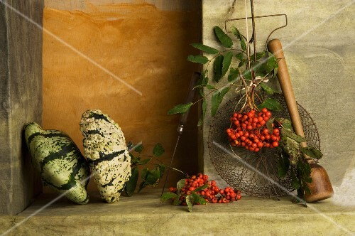 An arrangement of pumpkins and rowan berries