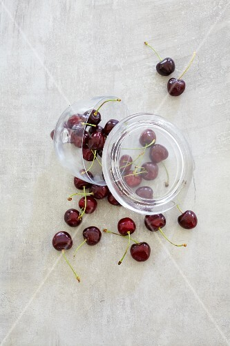 Fresh cherries falling out of a jar