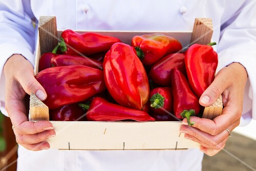 A chef holding a crate of red peppers