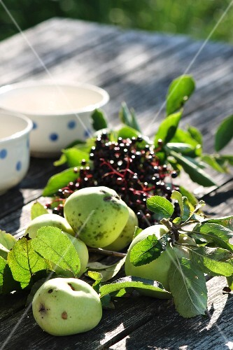 Green apples and elderberries on a wooden table