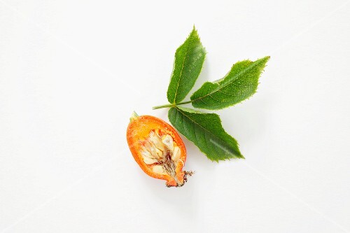 A rose hip, halved, with a leaf