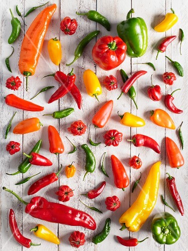 Peppers and chilli peppers